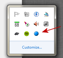 spotify_dsbridge_icon